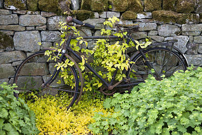 Photograph - An Abandoned Bicycle Surrounded And by John Short
