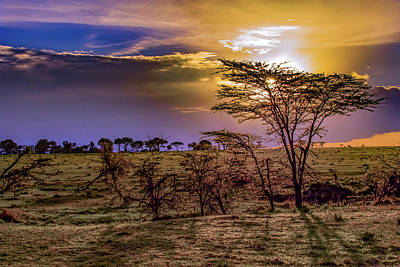 Photograph - An African Sunset by Janis Knight