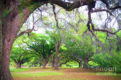 Photograph - An Afternoon In City Park - New Orleans by Kathleen K Parker