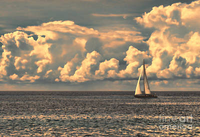 Photograph - An Afternoon Sailing by Steven Parker