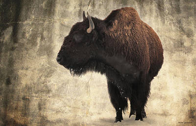 Bison Digital Art - An American Heritage by Brian Gustafson