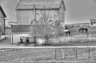 Photograph - An Amish Farm In B/w by Dyle Warren