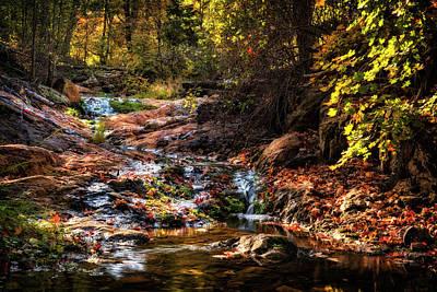 Photograph - An Arizona Autumn Creekside  by Saija Lehtonen