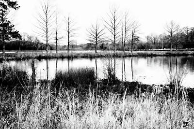 Photograph - An Arkansas Pond by Gina O'Brien