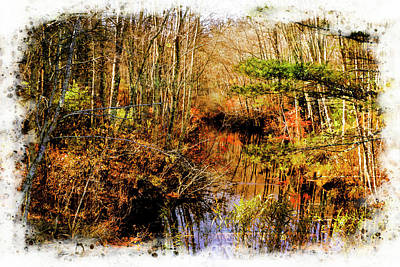 Photograph -   Late Fall Forest And Stream, by Rusty R Smith