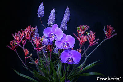Photograph - An Aussie Flower Arrangement by Gary Crockett