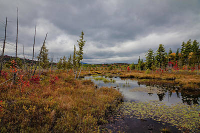 Photograph - An Autumn Afternoon On Raquette Lake by David Patterson