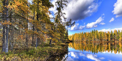 Photograph - An Autumn Day At Woodcraft Camp by David Patterson