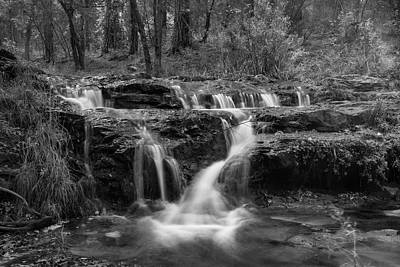 Photograph - An Autumn Day Creekside In Black And White  by Saija Lehtonen