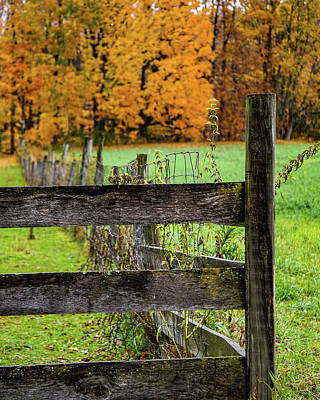 Photograph - An Autumn Moment In The Country by Kendall McKernon