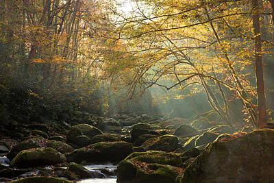 Photograph - An Autumn Morning by Mike Eingle