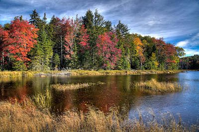 Photograph - An Autumn Morning On Fly Pond by David Patterson