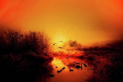 Photograph - An Autumn Morning by Pixabay
