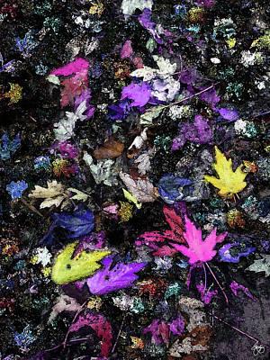 Photograph - An Autumn Pallet by Wayne King