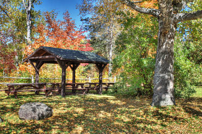 An Autumn Picnic In Maine Art Print by Shelley Neff
