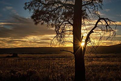 Photograph - An Autumn Sunset  by Saija Lehtonen