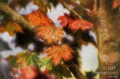 Photograph - An Autumn Trousseau  by Kerri Farley