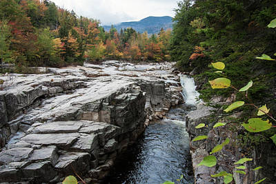 Photograph - An Autumn View Of The Swift River, Lower Falls Area White Mounta by Rusty R Smith