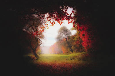Photograph - An Autumn View by Pixabay