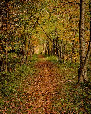 An Autumn's Walk Art Print