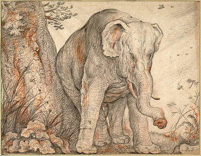 Rubbing Drawing - An Elephant Rubbing Itself Against A Tree by Roelandt Savery
