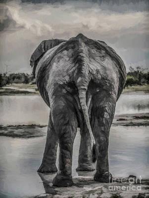 Digital Art - An Elephant's Tail by Liz Leyden