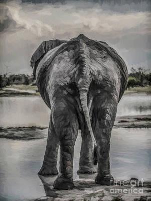 Digital Art - An Elephant's Tail by Liz Leyden