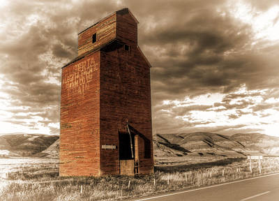 Photograph - An Elevator Named Dorothy by Wayne Sherriff