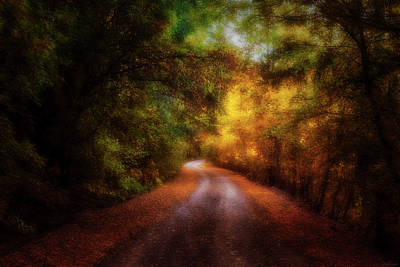 Photograph - An Enchanted Stroll by Rick Furmanek