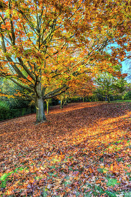 Photograph - An English Autumn Day by David Pyatt