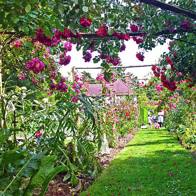 Photograph - An English Country Garden by Anne Kotan