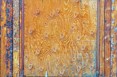 Photograph - An Ersatz Hatch Door by Bijan Pirnia
