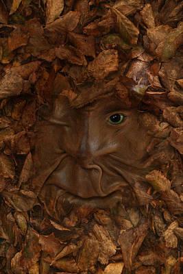Photograph - An Eye On Autumn by Robin-Lee Vieira