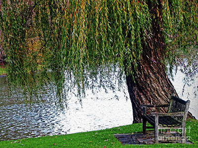 Photograph - Weeping Willow Tree - An Invitation To Come Sit Wall Art by Carol F Austin
