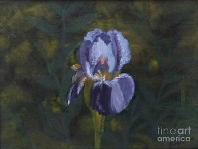 An Iris In My Garden Art Print