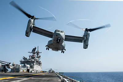 Cactus - An MV-22 Osprey lifts off from the flight deck of USS America during flight operations.    by Celestial Images