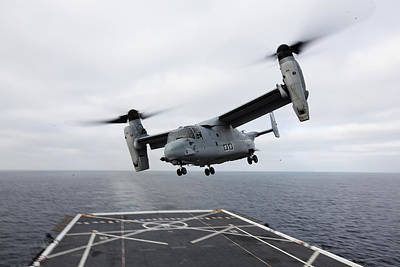 Us Navy Aircraft Painting - An Mv-22 Osprey Us Navy by Celestial Images