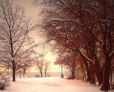 Photograph - An Okanagan Winter by Tara Turner