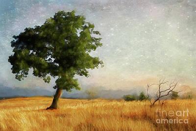 Painting - An Old Cherished Friend Ap by Dan Carmichael