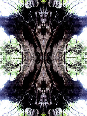 Photograph - An Old Stump - Reflections  by Marie Jamieson