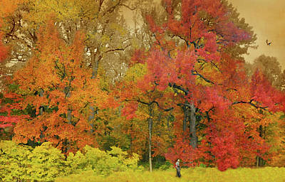 Photograph - A Walk In Orange by Diana Angstadt