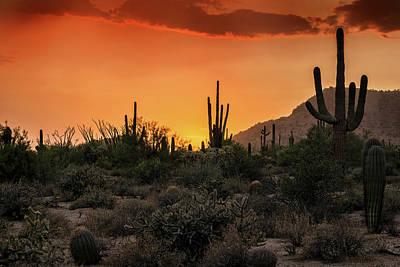 Photograph - An Orange Dream Of A Sunset  by Saija Lehtonen