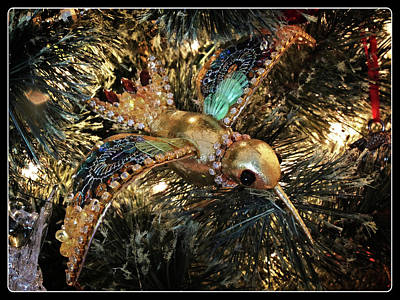 Photograph - An Ornament On The Tree by Scott Kingery