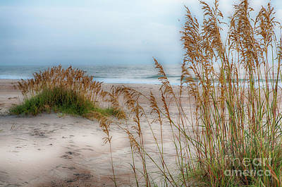 Photograph - An Outer Banks Beach by Dan Carmichael