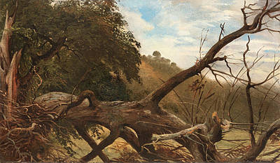 Forest Painting - An Uprooted Tree by Celestial Images