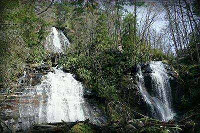 Photograph - Anna Ruby Falls by Laurie Perry