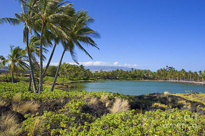 Mauna Kea Photograph - Anaehoomalu Bay by Ron Dahlquist - Printscapes