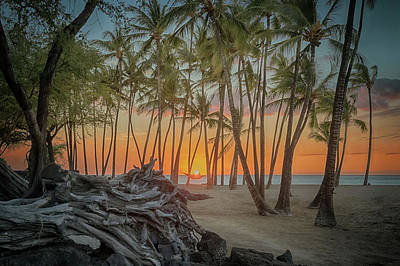 Art Print featuring the photograph Anaehoomalu Beach Sunset by Susan Rissi Tregoning