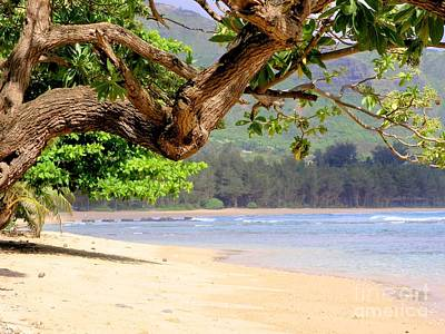 Photograph - Anahola Beach Park Kauai Hawaii by Mary Deal