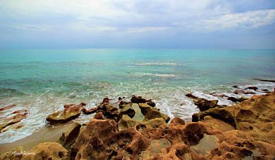 Anastasia Limestone Shoreline Jupiter Island Florida Art Print by Michelle Wiarda